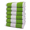 Lime Green / White
