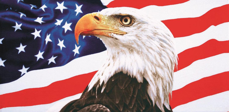 30x60 American Eagle with Flag Fiber Reactive Beach Towel.