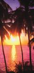 30x60 Sunset Fiber Reactive Beach Towel.