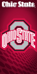 Ohio State Buckeyes Logo Beach Towel
