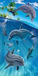 Island Dolphins Beach Towel