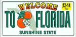 Florida Plate Beach Towel