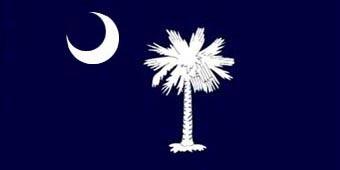 South Carolina Flag Beach Towel
