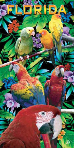 Florida Parrots Beach Towel