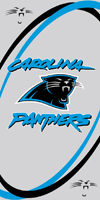 Panthers beach towels