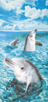 30x60 Dolphins at Sea Fiber Reactive Beach Towel.