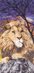 30x60 Lion Fiber Reactive Beach Towel.